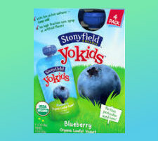 Printable coupon for stonyfield yogurt